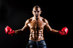 Man with boxing gloves Royalty Free Stock Photo