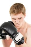 Man in boxing gloves Royalty Free Stock Photography