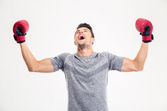 Man in boxing gloves celebrating his victory Royalty Free Stock Photo