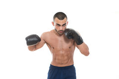 Man With Boxing Gloves Isolated On White Background Stock Photography