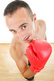 Man with boxing gloves looking at the camera if is anyone there Royalty Free Stock Photography