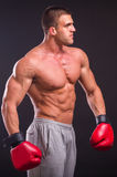 The man in boxing gloves Royalty Free Stock Photo