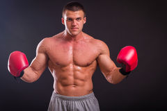 The man in boxing gloves Royalty Free Stock Image