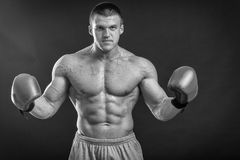The man in boxing gloves Stock Images
