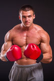 The man in boxing gloves Royalty Free Stock Photos