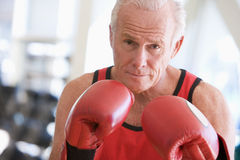 Man Boxing At Gym Royalty Free Stock Photo