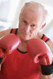 Man Boxing At Gym Royalty Free Stock Photos