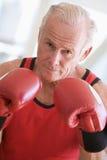 Man Boxing At Gym royalty free stock photos