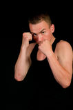 Man in boxing pose Royalty Free Stock Image