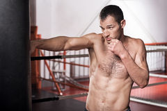Man boxing the punch bag in gym Stock Photography