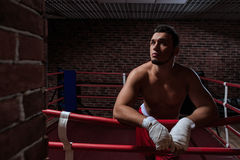 Man in boxing ring Royalty Free Stock Photography
