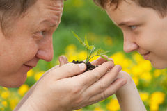 Man and boy holding green plant in hands. Stock Images