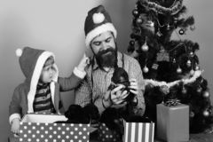 Man and boy in Santa hats play with puppies. Man and boy in Santa hat and hood play with puppies. Dad with beard and kid hold dogs near Christmas tree. New year royalty free stock images
