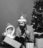 Man and boy in Santa hats play with puppies. Dad with beard and kid hold little dogs near Christmas tree. Xmas holiday concept. Father and son with curious royalty free stock photo