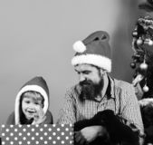 Man and boy in Santa hats play with puppies. New year of Dog concept. Father and son with happy faces wave and unpack presents on green background. Dad with stock images