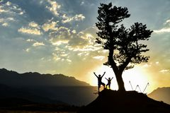 Man and boy standing under tree at sunset royalty free stock image