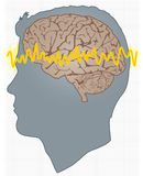Man_brain_cs1. Cross section profile of a man with brain and alpha wave length thought pattern. Grid in background for added thought implication Royalty Free Illustration