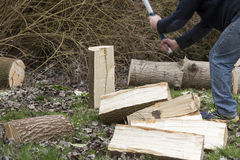 Man break wood with hammer Stock Photo