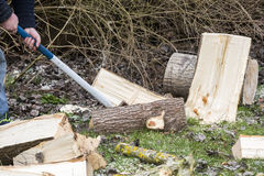 Man break wood with hammer Stock Image