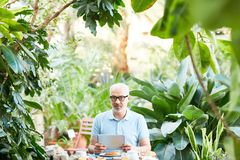 Man by breakfast Royalty Free Stock Images