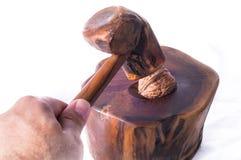 Man breaking a nut in a nutshell. Man breaking a walnut in a nutshell stock photography