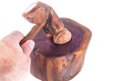Man breaking a nut in a nutshell. Man breaking a walnut in a nutshell royalty free stock photo