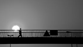 Man on Bridge Royalty Free Stock Image