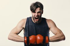 Man with bristle and furious face wears boxing gloves. Boxer makes hits and punches as training. Sports and competition. Concept. Athlete with leather box royalty free stock images