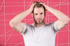 Man with bristle strict face enjoy freshness of hair, pink background. Haircare concept. Man with beard or unshaven guy Royalty Free Stock Photography