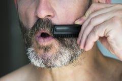 Man brushing his beard Stock Images