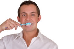 Man brushing his teeth. Adult male brushing his teeth isolated on a white background, closeup picture royalty free stock image