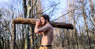 Man brutal strong attractive guy collecting wood in forest. Lumberjack or woodman naked muscular torso gathering. Wood. Strength and power. Man brutal royalty free stock image