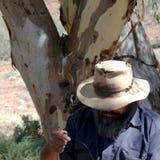 Man building a boomerang. Flinders Rangers National Park, Australia - February 09, 2002: Building a boomerang Royalty Free Stock Images