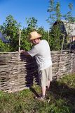 The man builds a wattle fence Stock Photography