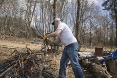 Man buring brush Stock Image