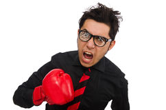 The man businessman with red boxing gloves. Man businessman with red boxing gloves Stock Photography
