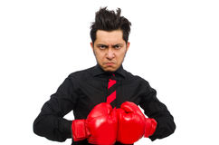 Man businessman with red boxing gloves Stock Photography