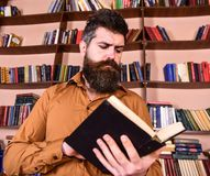 Man on busy thoughtful face reading book, bookshelves on background. Teacher or student with beard studying in library. Scientist busy with exploring book Royalty Free Stock Photo