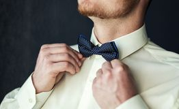 Man butterfly clothes,businessman putting on  bow tie. Suit, Han Stock Photos