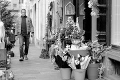 Man buying CHristmas flowers at florist Stock Photography