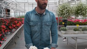 Man Buying Flowers in a Sunlit Garden Shop. 4K. Young man shopping for decorative plants on a sunny floristic greenhouse stock video footage
