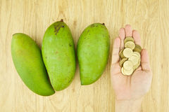 Man buying mangifera indica or mango by gold coin Royalty Free Stock Photography
