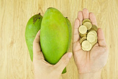 Man buying mangifera indica or mango Stock Image