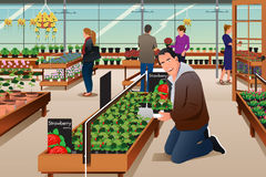 Man Buying Strawberry Plant Stock Image