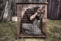Man in cage. In HDR Royalty Free Stock Photography