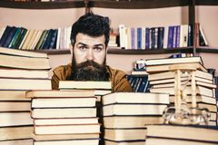 Man on calm face between piles of books, while studying in library, bookshelves on background. Bibliophile concept. Teacher or student with beard sits at table royalty free stock images