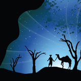 Man with a camel. Silhouette of man with a camel Royalty Free Stock Image