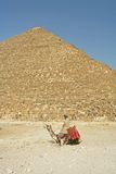 Man on camel near pyramids. A man riding a camel in front of the Great Pyramids in Cairo, Egypt Stock Photo
