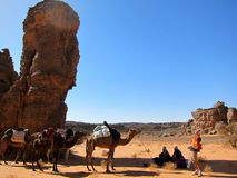 Man and camel. Nomad with his camel in the desert Stock Photography