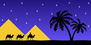 Man on the camel the pyramids. Royalty Free Stock Image